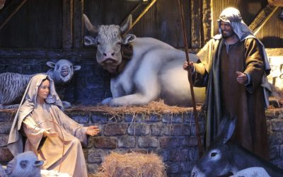 The Reach of the Manger – Luke 2:7